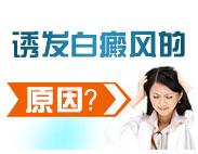 如何检测诱发白癜风的病因